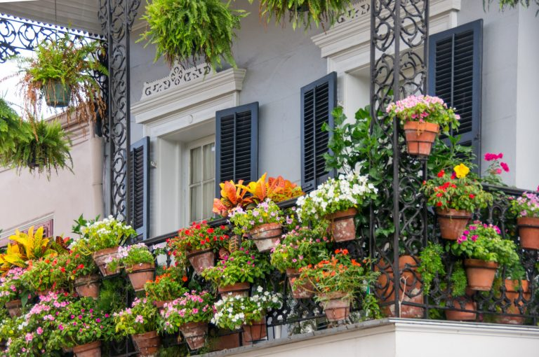 7 Small Space Gardening Ideas